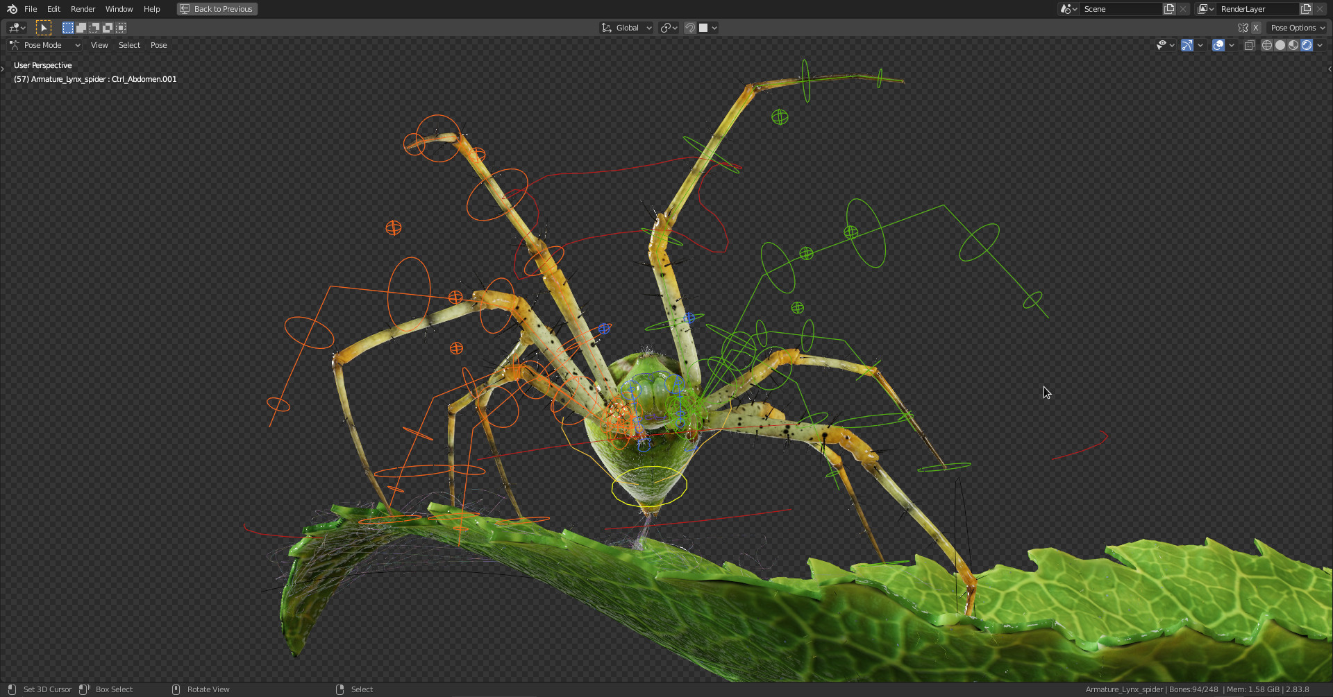 images/graphisme-3d/animaux/lynx_spider